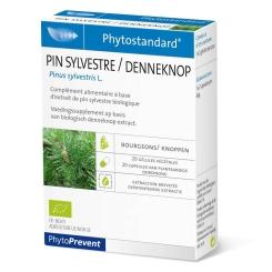 Phytostandard Pin Sylvestre